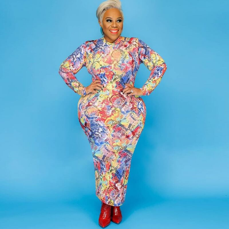 Plus Size Colorful Dresses - Serpentine main picture