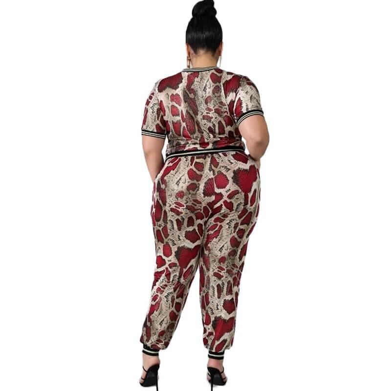 Plus Size Sets Outfits - solid color back