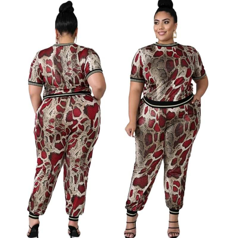 Plus Size Sets Outfits - main picture