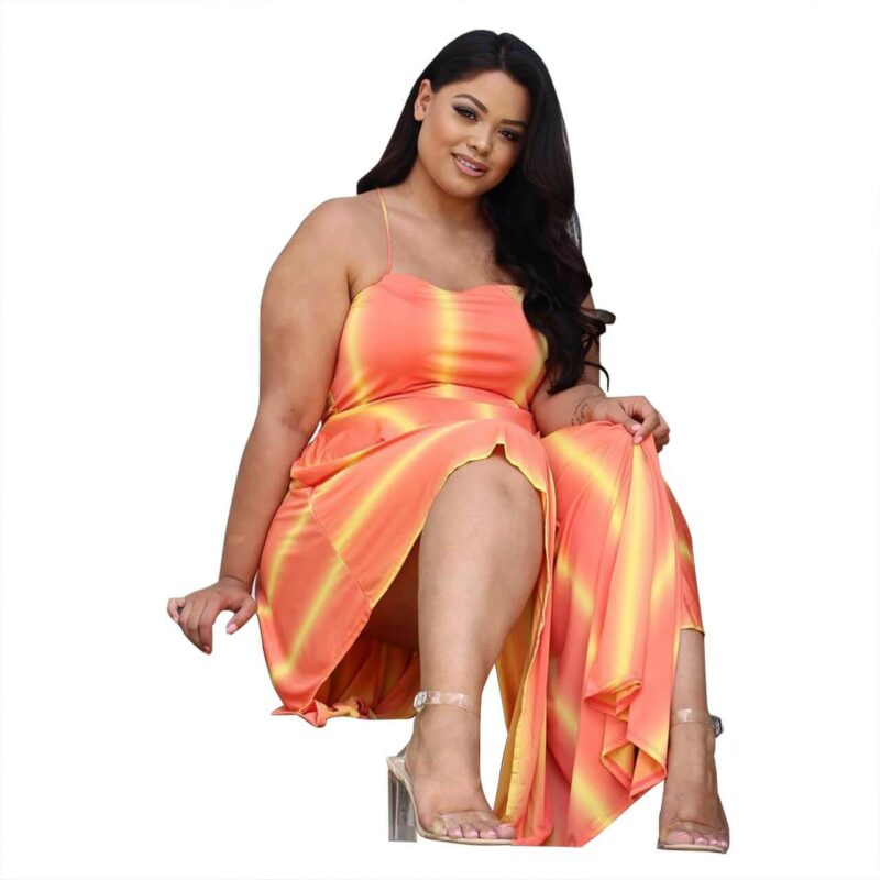 Plus Size Swim Dress - orange no background